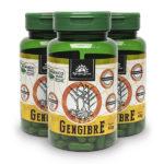 Kit Cápsulas de Gengibre orgânico (3 potes)