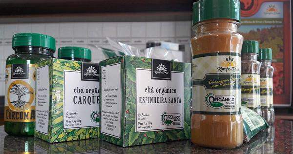 Quatro dicas fundamentais para vender mais orgânicos em sua loja