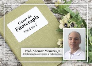 Curso de Fitoterapia 2020 – Módulo I