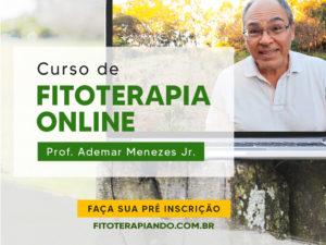 Curso de Fitoterapia Online – Faça sua pré-inscrição!