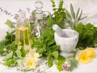 Maceração: A extração do melhor da planta