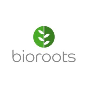Terceirização: Cúrcuma em Cápsulas Bioroots